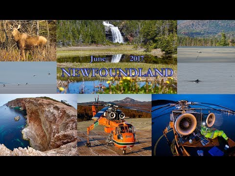 Port au Port Peninsula, Newfoundland | Arrows of the Sea | N163AC | Maritime Transmission Link