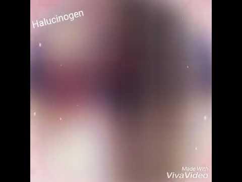 Halucinogen