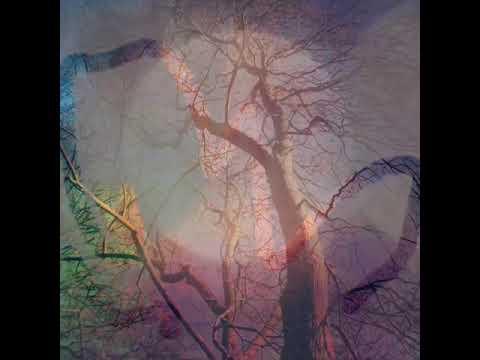 Heath Common. Album intro 1.