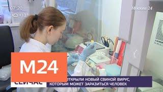 Смотреть видео Ученые открыли новый опасный для человека вирус - Москва 24 онлайн