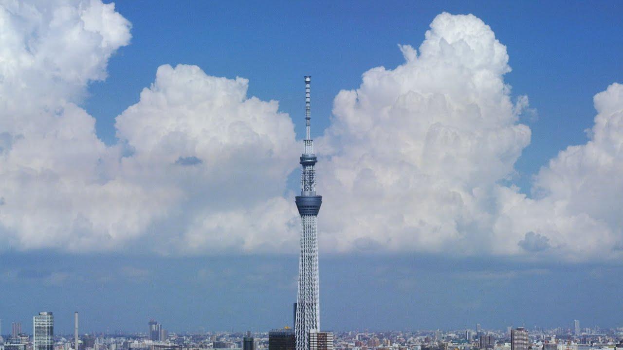 「東京 夏」の画像検索結果