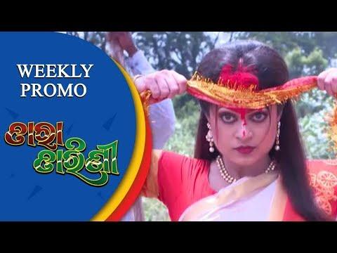 Tara Tarini   Weekly Promo   Odia Serial – TarangTV thumbnail