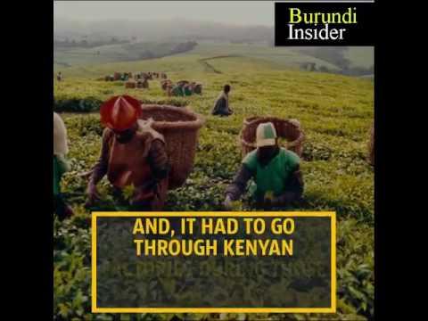 Burundi Insider Series :Tea returns to the markets Economic development