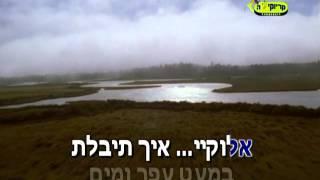 חיים ישראל יתגדל ויתקדש קריוקי