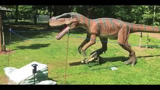 Inside Jurassic Kingdom in Cardiff