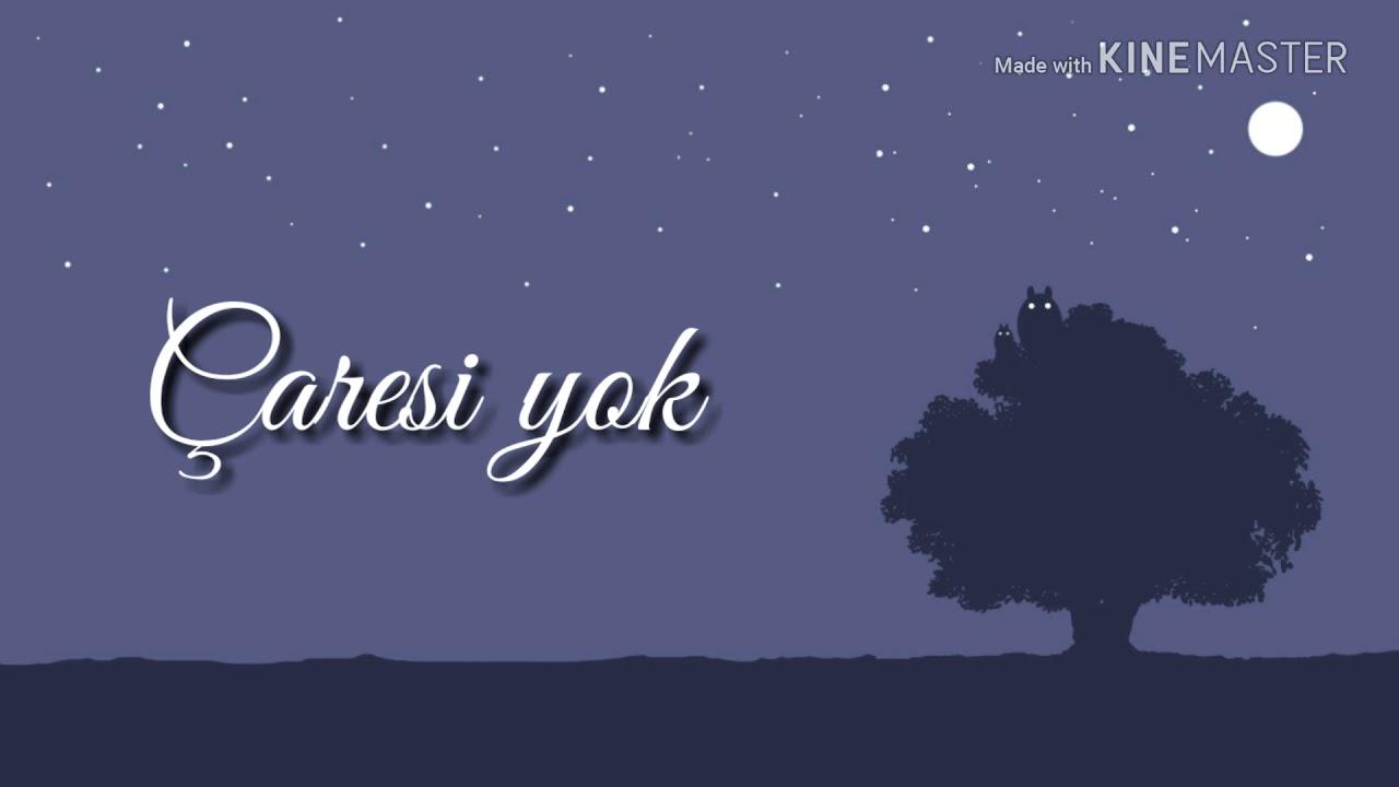 Cihan Mürtezaoğlu - Bir beyaz orkide (Lyrics video)