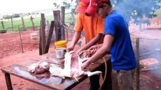 GRANDE S    ABATES DE     SUINOS  CASA DA GUICONA