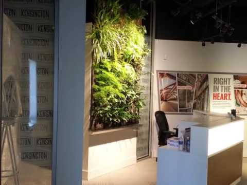 Living and Moss Walls by Greenery Office Interiors Ltd Calgary