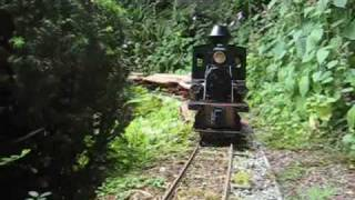 Live Steam 15mm scale Logging Locos