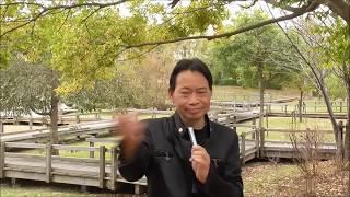 【今日の出来事と人物・用語集】<平将門・叛乱>939年(天慶2年)藤原...