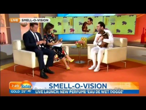 Today Show Funny Bits Part 75. Stevie & Dickie in the Doghouse!