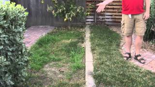 How Fertilize Bermuda Gr Lawns Spring Lawn Care