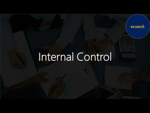 Internal Control - Analysis