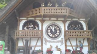 World's Largest Coo Coo Clock, Germany.