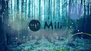 Mili official V.I.