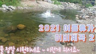 계곡수영 / 피서 / 어비계곡[소이]