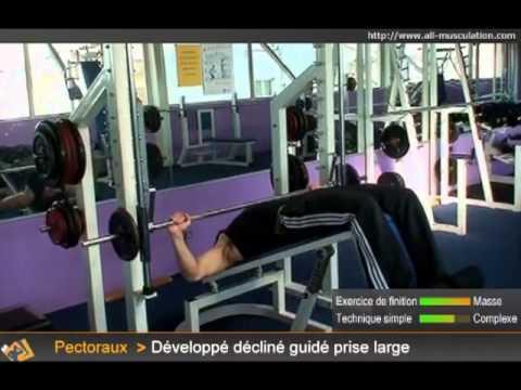 Top4 des exercices pour le Bas des Pectoraux - Muscler les ...