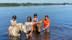 Lapset uittaa poneja ❤️