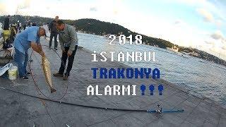 İstanbul Boğazı MUTLAKA izleyin!!! 2018 Trakonya ALARMI!