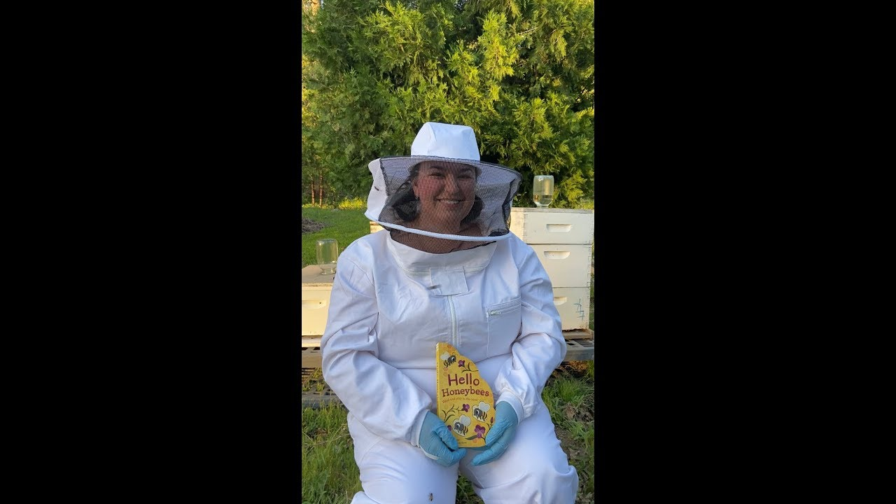Hello Honeybees Read and play in the hive!
