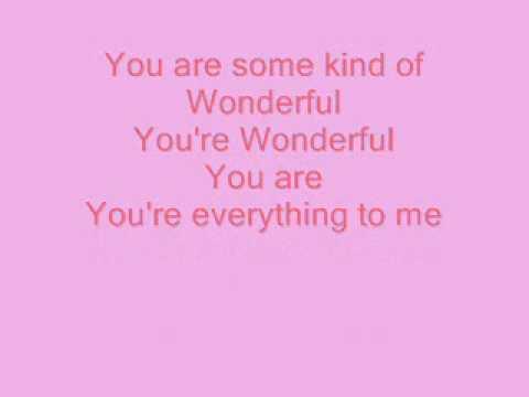 Hi5 Some Kind Of Wonderful Lyrics.wmv