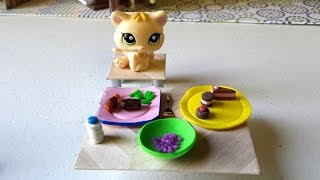 How To Make Plates And Bowls: Lps Doll Diy