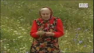 Крымский Травяной Чай