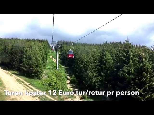 Campingferie i Harzen - tovbane op - løbehjul ned