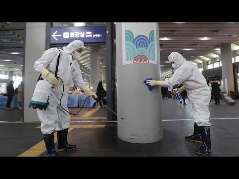 العلماء الأوروبيون يعبرون عن مخاوفهم مع انتقال فيروس كورونا الجديد إلى بلادهم…  - نشر قبل 2 ساعة