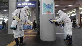 العلماء الأوروبيون يعبرون عن مخاوفهم مع انتقال فيروس كورونا الجديد إلى بلادهم…