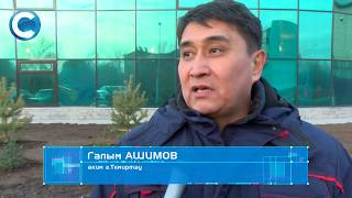 Депутаты городского маслихата высадили около 200 саженцев