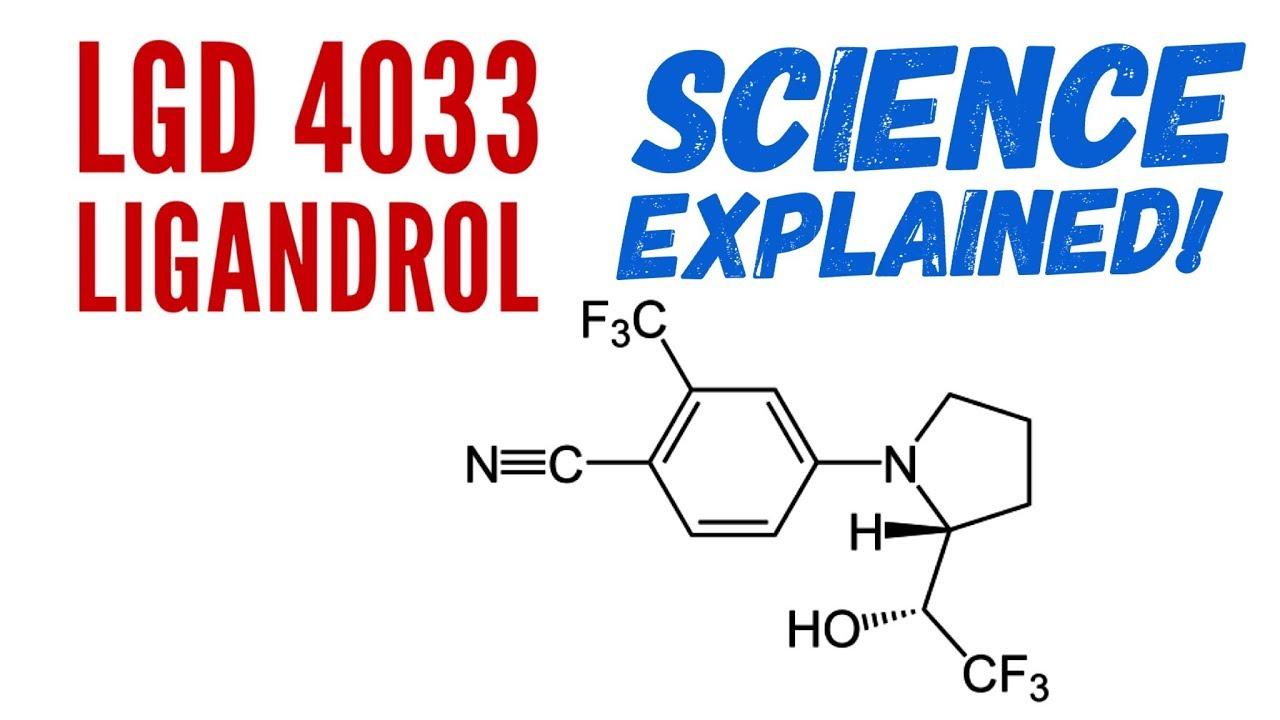 LGD 4033 (Ligandrol) 10mg/mL Solution