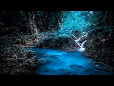 Falling Into Sleep | Music just before sleeping | Background Music | Nature Sounds
