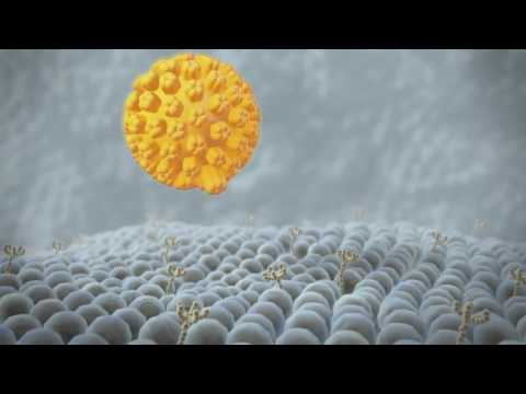 Melanoma Cancer Cure With Virotherapy - Rigvir Virus