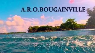 Bougainville boat trip