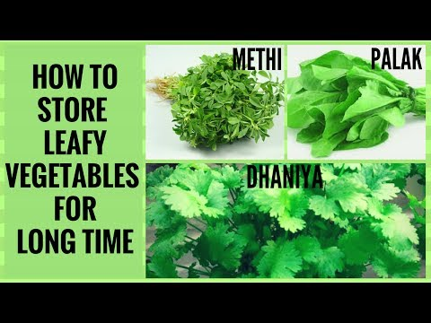 How to keep your leafy greens fresh for longer (part 1)How to Clean and Store Green Vegetables  