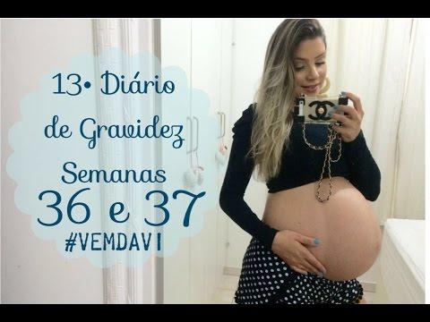Ver Video de Camila 13º Diário de Gravidez - Semanas 36 e 37