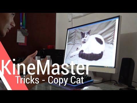 Copy Cat - KineMaster Tricks
