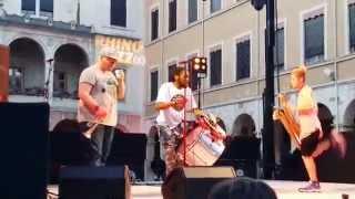 Too Many Zooz - Live in Vienne 26 Juin 2015 (15 de concert)