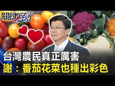 台灣農民真正厲害! 謝龍介:不只紅蘿蔔,番茄花菜也種出五顏六色! 關鍵時刻20190308-2 謝龍介 林佳新
