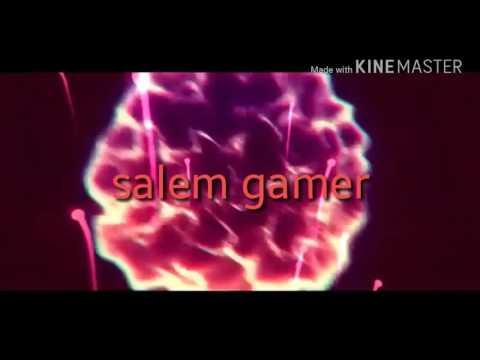 انترو لسالم قيمر او Salem gamer اتمنى يعجبك
