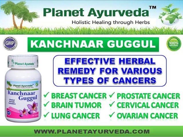 Kanchnar Guggul Benefits- Ayurvedic Medicine for Cancer Treatment