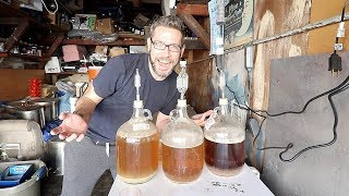 Blending and tasting aged sour beers