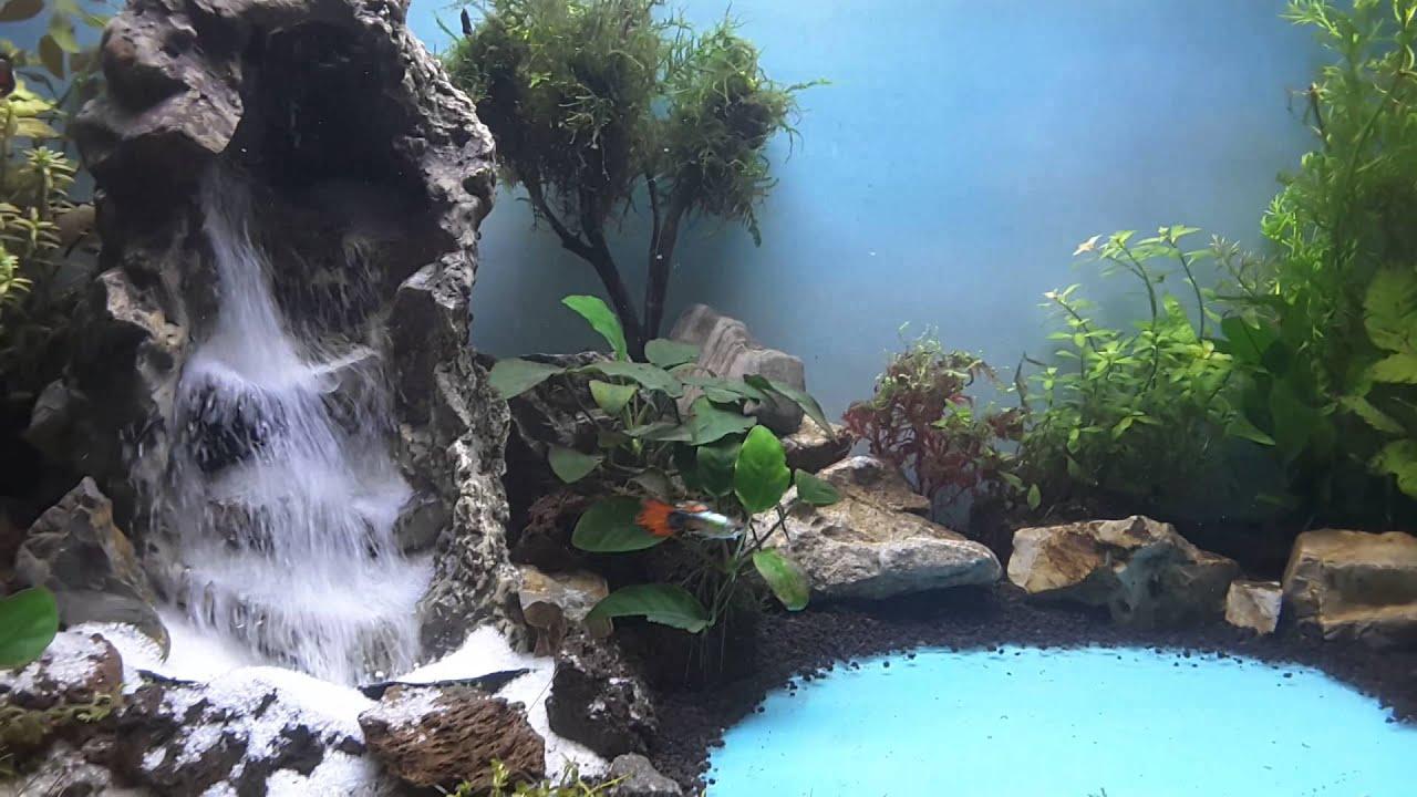 Aquascape waterfall tanjungpinang part 2 - YouTube