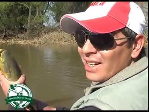 Compañeros de Pesca   Emision 005