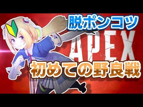 【APEX】初野良!に放たれるピヨピヨでびゅー戦【ホロライブ/アキロゼ】