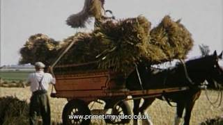 Archive farming video from 1955