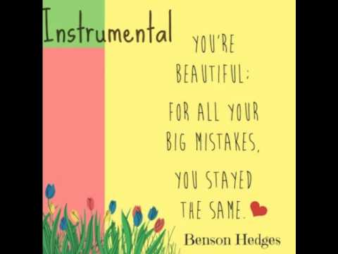 Fun.- Benson Hedges (Instrumental version)