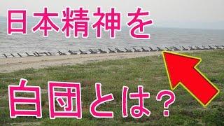 【軍事ニュース】日本精神を伝えた軍事顧問団台湾の国民党軍人へ「白団」とは?