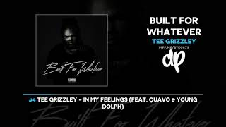 Tee Grizzley - Built For Whatever (FULL ALBUM)